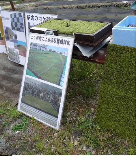 コケによる壁面緑化